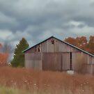 Gray Fall Day by vigor