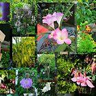My Garden Collage by AnnDixon