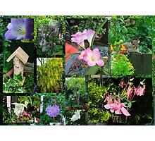 My Garden Collage Photographic Print