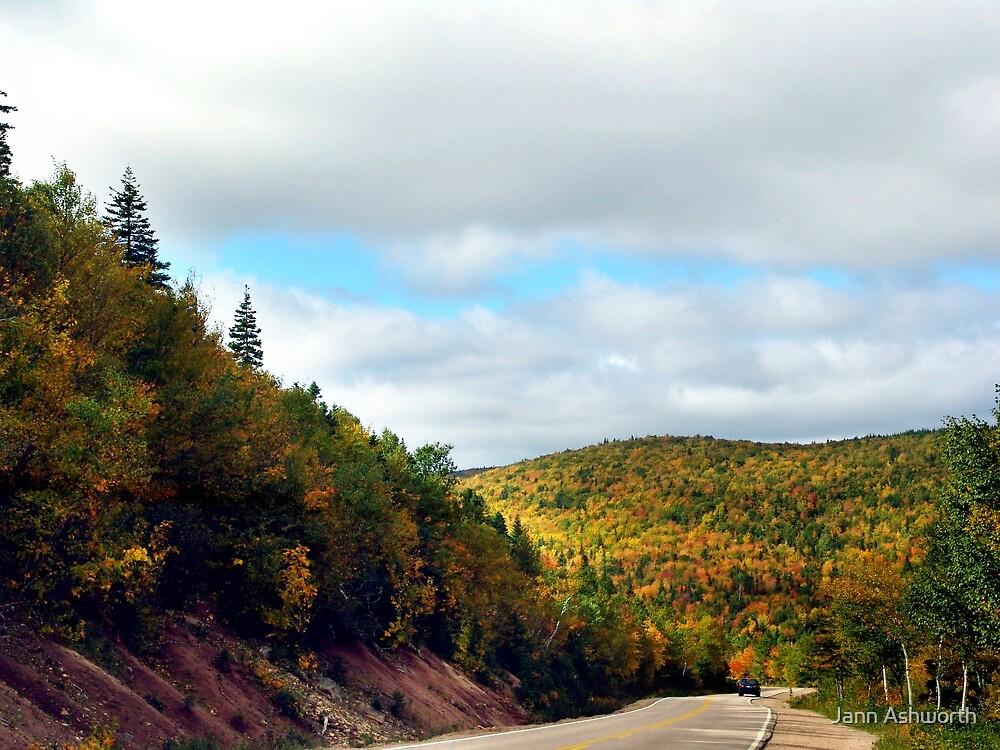 Autumn Drive on the Cabot Trail by Jann Ashworth