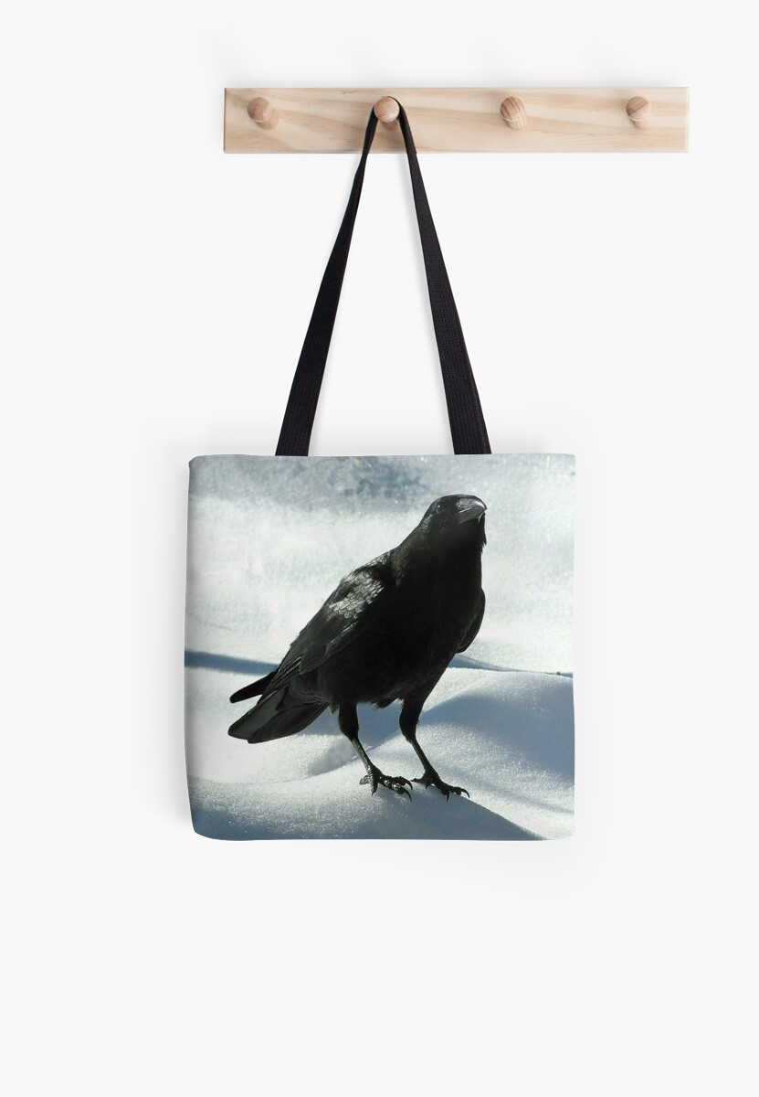Crow on Snow by Jean Gregory  Evans