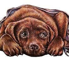 Drawing of Brown Labrador Dog In Blanket  by ArtistryByLM