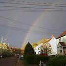 Rainbow by crazyhorse557