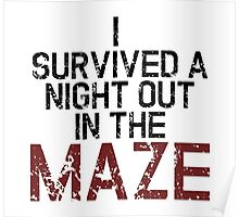 I survived the Maze Poster