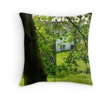 A Little Of What You Fancy... Throw Pillow