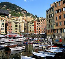 Camogli - The little Harbour by sstarlightss