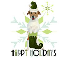 Jack Russell Terrier Holiday Dog Photographic Print