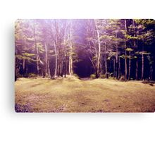 Purplescape Canvas Print
