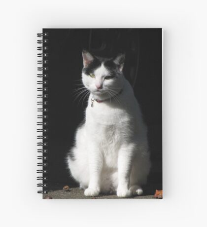 Black and White Cat Sitting Spiral Notebook