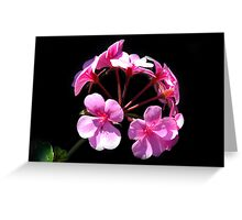 Pink Cluster Greeting Card