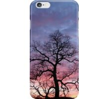 See It With Your Eyes iPhone Case/Skin