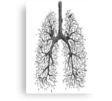 Branched lungs Canvas Print