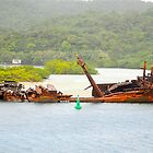 Another ship wreck by Carl LaCasse