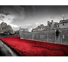 Tower Of London Poppies (Red on Black & White) Photographic Print