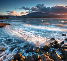 Rose Bay, Tasmania by Alex Wise