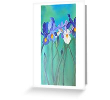 irises for cards Greeting Card