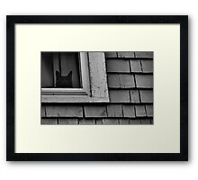 Someone's Watching Framed Print
