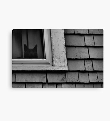 Someone's Watching Canvas Print