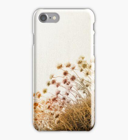 adagio (diptych) iPhone Case/Skin