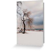 A Winter's Day at Lake Ontario-Canada Greeting Card