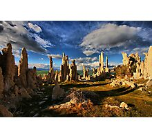 Mono Lake Garden Photographic Print