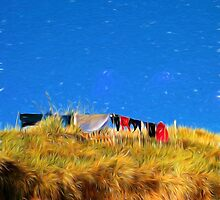 Washing day by Violaman