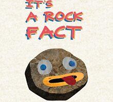 ROCKS Zipped Hoodie