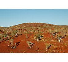 Sunburnt Country Photographic Print