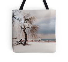 A Winter's Day at Lake Ontario-Canada Tote Bag