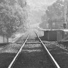 Railway Station Tyabb. by Lanii  Douglas