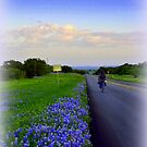 Cycling on a Texas Evening by Charmiene Maxwell-Batten