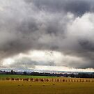 Thunderstorm approaches Gulgong by Bill  Russo