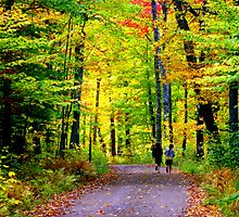 little girls....BIG FOREST by Gary Boudreau