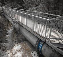 Bridge To Nowhere by Malik Jayawardena