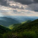 Blue Ridge Parkway~Craggy Gardens by Jane Best