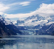 Alaska  -  Johns Hopkins Glacier by Judy Wanamaker
