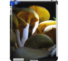 Looking For  Bioluminescence iPad Case/Skin