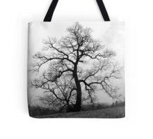 WINTER PRINCESS TREE Tote Bag