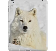 Wisdom iPad Case/Skin