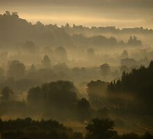 good misty morning to you by Peetjohn