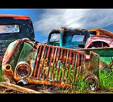 Salvage Yard  by stephcox
