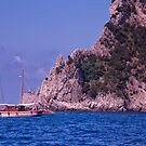 Sailing Along to Capri by daphsam