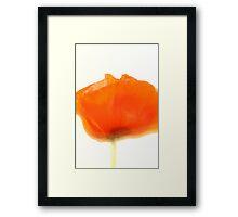 Klatschmohn Framed Print