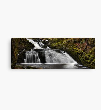 earth's forces Canvas Print