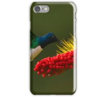 White-necked Jacobin iPhone Case/Skin