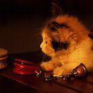I Am Not an Inanimate Objict!  by meowiyer