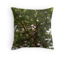 At night, you reach the stars Throw Pillow