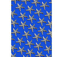 Starfish Blue Photographic Print