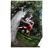 Tree Spin Poster