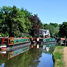 Canal Boats by Lisa Williams